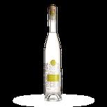 Delicia Hrozno Chardonnay 0.5L, 42%